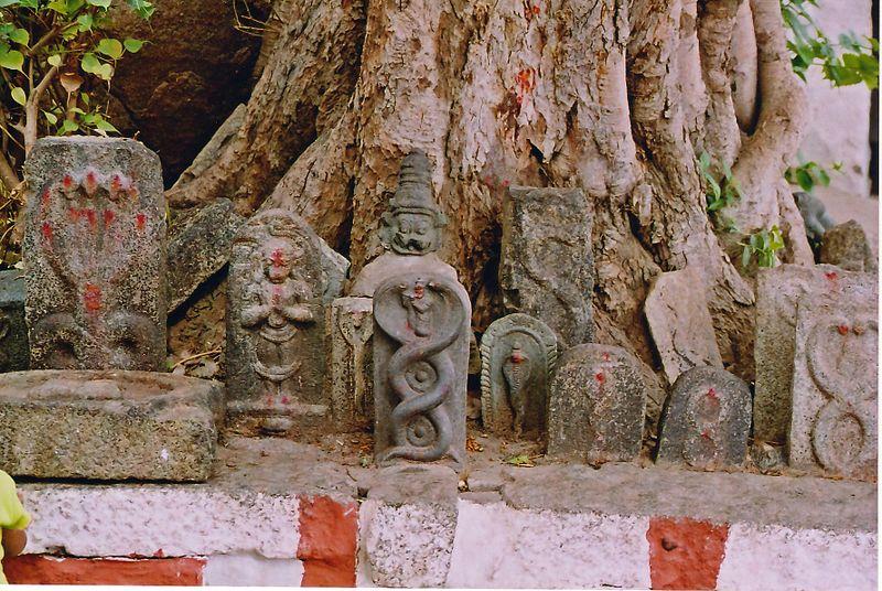 800px-Vijayanagar_snakestone